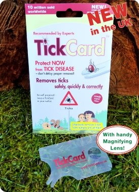 TickCard Tick Remover Fits into Your Wallet 2