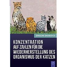 Konzentration auf Zahlen für die Wiederherstellung des Organismus der Katzen