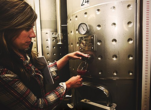 Campo-Viejo-Tempranillo-Rotwein-Spanischer-Rotwein-mit-Fruchtaromen-wrzigen-Kruternoten-zarter-Vanille-Kokos-Se-Weinbox-Set-6-x-075-L