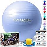 arteesol Palla Fitness, Palla Pilates Anti-Scoppio 45cm/55cm/65cm/75cm/85cm Palla da Ginnastica con Pompa Rapida per Fitness Yoga e Pilates (65cm, Cielo Blu)