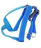 #8: Magnusdeal Genuine Leather Grip Adjustable Dog Chest Strap Belt/Harness Pet Walking, Blue