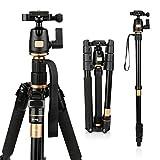 AFAITH Professional Stativ Tragbare Magnesium-Aluminiumlegierung Stativ Monopod & Kugelkopf SLR-Kamera SLR Camera Canon Nikon Pentax Sony Tripod Q-555
