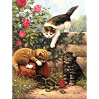 Royal & Langnickel Painting by Numbers A4 Size Kittens at Play Designed Painting Set