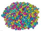 #5: Goofy Tails Multi Color Stone Gravel For Aquarium Decoration (10 Kg) With Key Chain