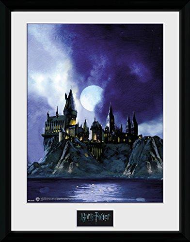 HARRY POTTER Hogwarts Gerahmter Fotodruck bemalt, 40x 30cm