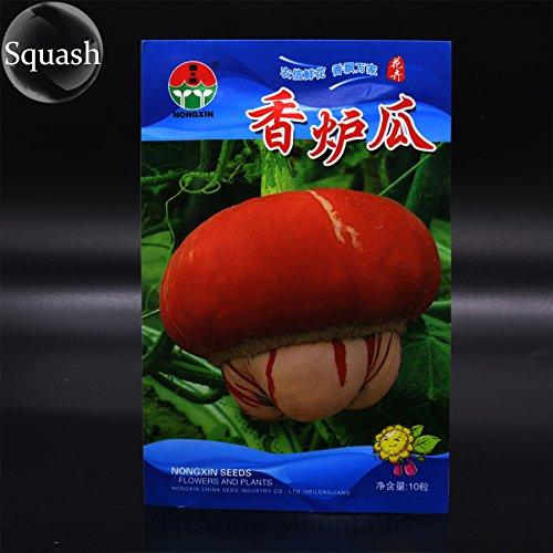 Heirloom Cucurbita maxima 'bruciatore di incenso' semi di zucca ornamentale Frutta, confezione originale, 10 Semi