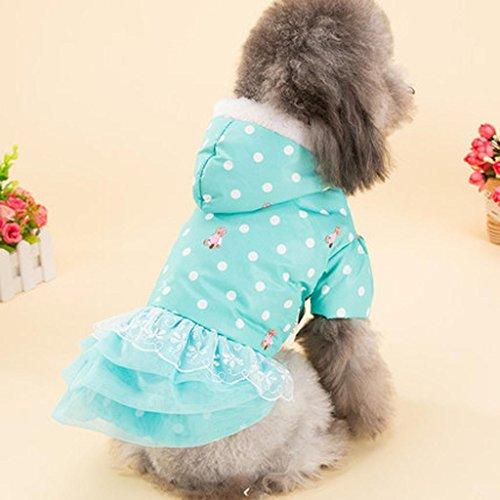 WSS cane da compagnia Pois Orso principessa vestito di cotone