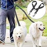 Danigrefinb Pet Supplies Hundeleine, Doppel-Hunde-Leine, Splitter, reflektierende Nähte, verstellbar