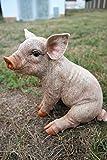 Schweinchen 25 cm Figur Garten Tier Gartenfigur Schwein TOP