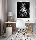 FORWALL Glasbild Glasfoto Echtglas Wandbild Zebra Real Glass Print Picture G5 (80cm. x 60cm.) AMFGT11767G5 Zebra Tier Pferd Natur