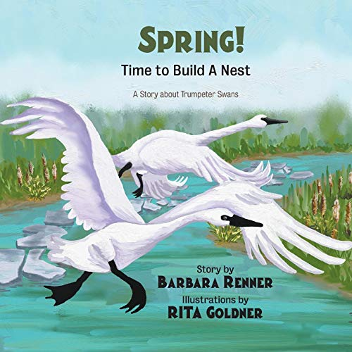 Trumpeter Swan (SPRING! Time to Build a Nest, A Story about Trumpeter Swans)