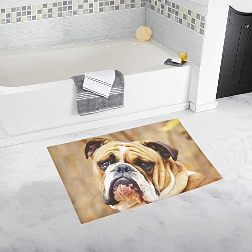 JOCHUAN Spaß englische Bulldogge Welpen benutzerdefinierte rutschfeste Badematte Teppich Bad Fußmatte Boden Teppich für Badezimmer 20 X 32 Zoll -