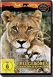 Frei geboren - Königin der Wildnis