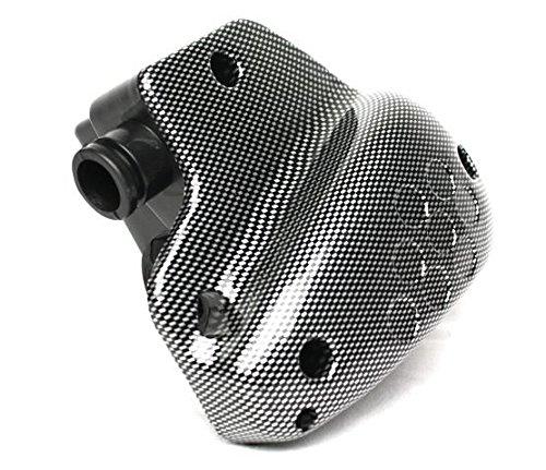 Luftfilter Box Carbon Peugeot Speedfight, Buxy, Elyseo, Squab, TKR, SV50, Limbo