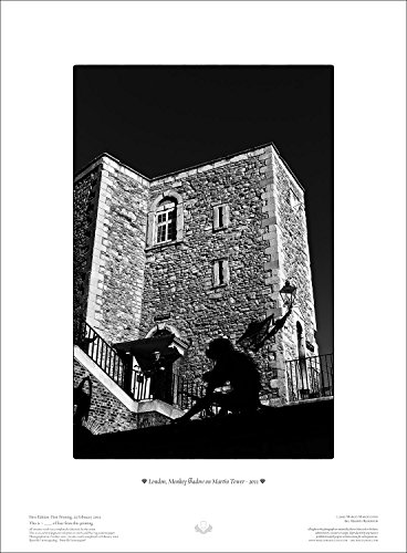 stampa-fotografica-in-bianco-e-nero-28x38-cm-london-monkey-shadow-on-martin-tower