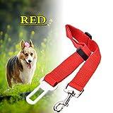 Verstellbare Hundeleine, Leine zum Anschnallen des Hundes im Auto, Verbindung zwischen Halsband/Geschirr und Sicherheitsgurtschloss, für die Sicherheit unterwegs