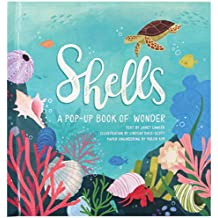 Lawler, J: Shells: A Pop-Up Book of Wonder (4 Seasons of Pop-Up)