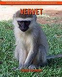 Vervet: Images étonnantes et faits amusants pour les enfants