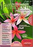 Pflanzen wunderschön - Ausgabe 6 - Sommer - gedruckte Ausgabe als seltenes Sammlerstück aus unserem Archiv.