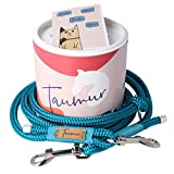 Taumur: zweifach verstellbare Hunde-Tauleine - blaugrün/türkis - Leine für mittelgroße Hunde aus robustem PPM