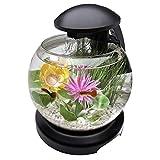 Perfecto Pecera con caída de agua en forma de cascada con luz para tus peces