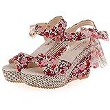 ZARLLE Zapatos De Mujer Shake Sandalias De Verano De Moda Floral Zapatos De TacóN Bajo Grueso Sandalias Casuales Sandalias De TacóN Bajo Zapatillas De Plataforma De Tobillo (38, Rojo)