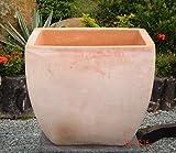 Blumentopf Echt Terrakotta 40 x 40 cm, Blumenkübel für Garten und Wohnung Terracotta Kein Kunststoff, Blumen