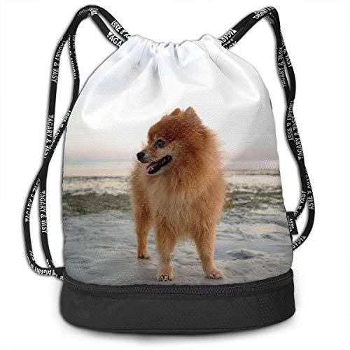 Men & Women Waterproof Large Storage Drawstring Backpack - Pomeranian On The Beach Cinch Backpack Sackpack Tote Sack for Gym Hiking School