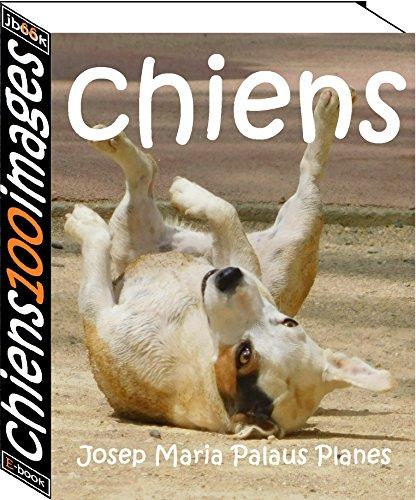 Couverture du livre chiens (100 images)