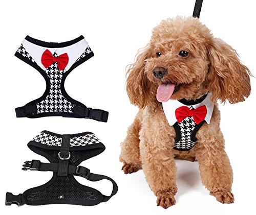 Welpe Vest Harness Weich Mesh Hund Haustier Laufgeschirr Hundeweste Geschirr (XL)