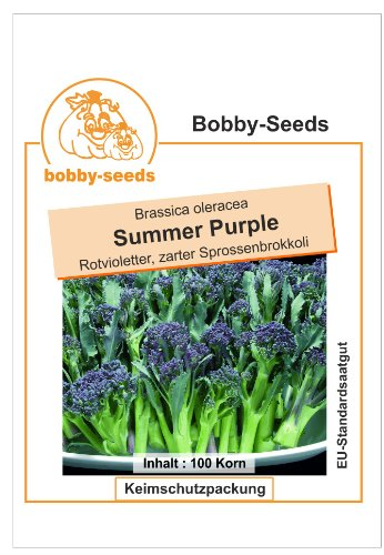 Bobby-Seeds Kohl-Samen Sprossenbrokkoli Summer Purple Portion