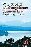 »Auf ungeheuer dünnem Eis«: Gespräche 1971 bis 2001 - W.G. Sebald