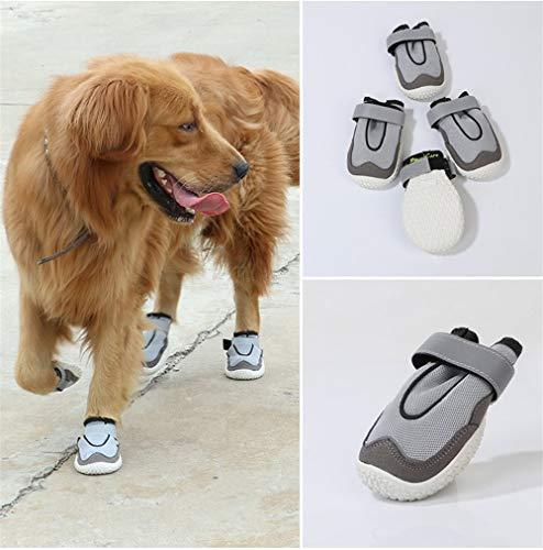 Hündchen Schuhe Hund Schuhe Vier Jahreszeiten Net Modelle Herbst und Winter Samoyed Golden Retriever Schuhe Deutsch Shepherd Schuhe Draußen (Dog Paw Hausschuhe Für Frauen)