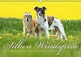 Silken Windsprite - Mit Merlin und Calisto durch´s Jahr 2018 (Wandkalender 2018 DIN A3 quer): Die seidigen Windhunde aus Amerika (Monatskalender, 14 ... [Apr 13, 2017] Müller - GoldenMerlo.de, Maike