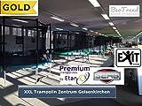 Bergtoys Trampolin Favorit Sport Series, InGround, 430cm - 7