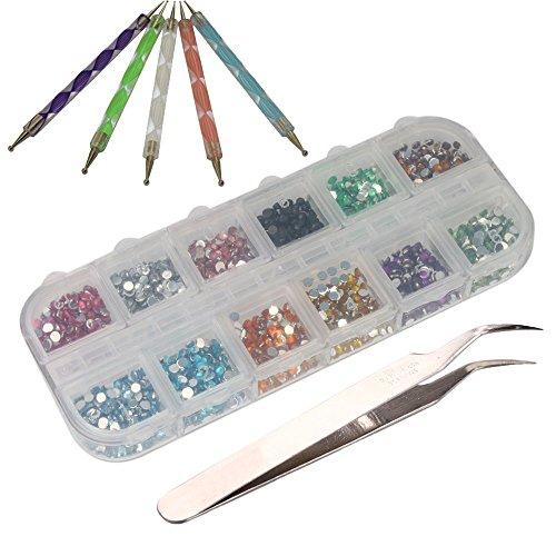 TOOGOO (R) 3000 Stueck 2mm 12 Farben Nagel Kunst Glitter Strass Tipps + 5 x 2-Kanal Marbleizing Punktierung Pinsel + Pinzette -