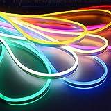 Lumière au néon LED, AC 220V flexible LED Light Strip au néon avec 120 LEDs par mètre, imperméable à l'eau, multicolore choisir pour la décoration de fête de vacances bricolage maison (16.4ft / 5m)