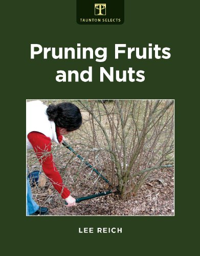 pruning-fruits-and-nuts-trees