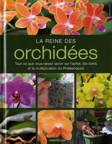Reine Orchidee (La reine des orchidées: Tout ce que vous devez savoir sur l'achat, les soins et la multiplication du Phalaenopsis)