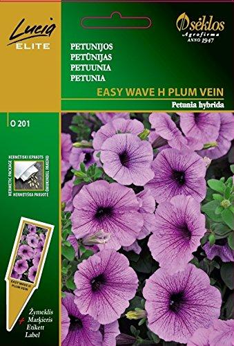 Seklos LT PETUNIA (SURFINIA) EASY WAVE H PLUM VEIN - 6 SEEDS