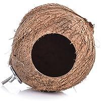 Yunt pájaro nido de pájaro juguete Papagayo Madera Coco naturlich juguete, 3tipos