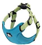 Petsup Soft Reflective Nylon Front Range Harnesses For Small Medium Large Dog Sea Blue