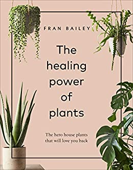 The Healing Power of Plants: The Hero House Plants that You Back on cutting back tomato plants, pinching back house plants, cutting back spring flowers, cutting back iris plants, cutting back bushes, trimming back house plants, cutting back geraniums, cutting back angel wing begonia, cutting back ornamental grasses,