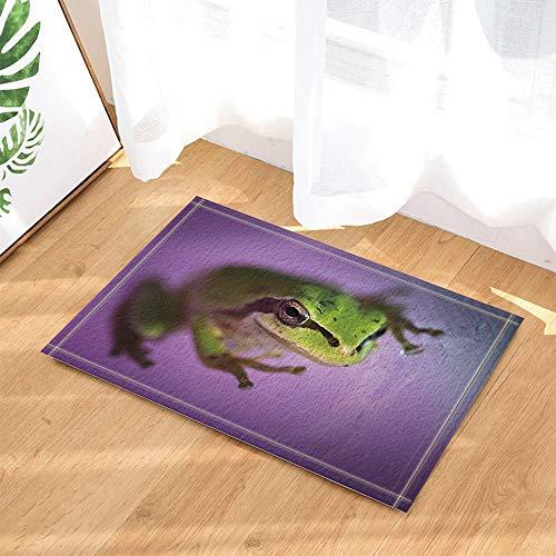 r Wildanimal-Frosch-Pfosten gegen purpurroten Hintergrund-Beleg-Schuh-Einlegesohle-BadeziFFer-Matte 15.7x23.6in verziert ()