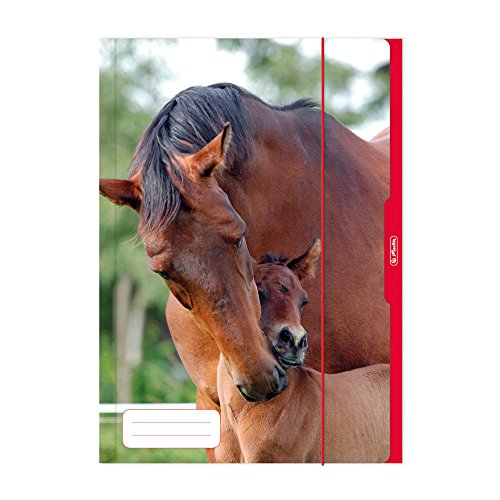 Herlitz 10285690 Sammelmappe A3 Pferd