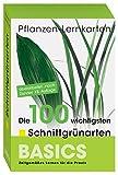 Pflanzen Lernkarten: Die 100 wichtigsten Schnittgrünarten: 100 Lernkarten in Lernkartenbox - Karl-Michael Haake