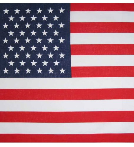 a - Bandana mit amerikanischer Flagge Drucken (Flag Bandana)