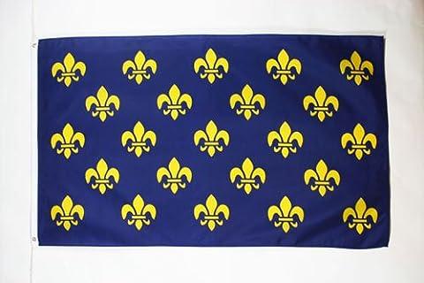 FRANCE BLUE AND GOLD FLEUR-DE-LIS FLAG 3