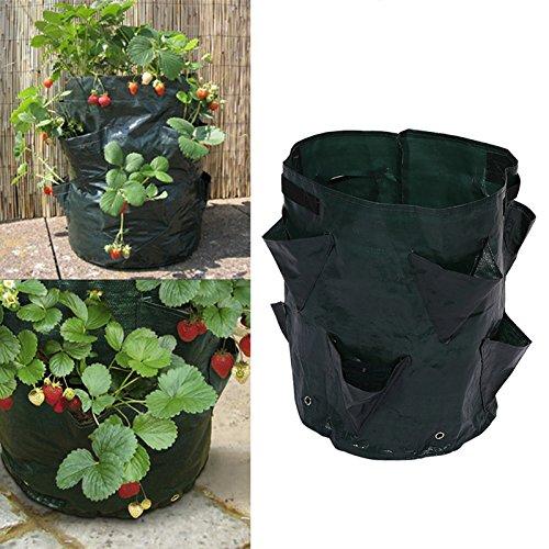 Homeng Lot de 2 Sacs de Plantation de Fraises avec 8 Poches, pour Plantes aromatiques, 10 gallons