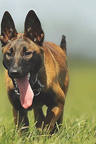 Malinois Notebook di Wild Pages Press